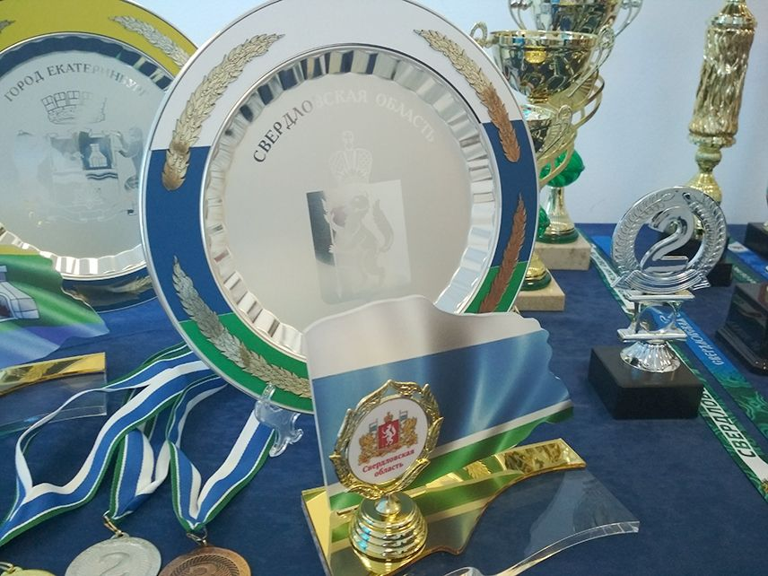 Коллегия министерства физической культуры и спорта Свердловской области при участии Объединения «Диалог-Конверсия»